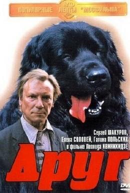 Постер фильма Друг (1987)