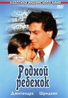 Родной ребенок (1987)