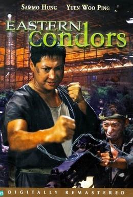 Постер фильма Восточные кондоры (1987)