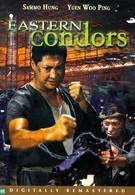 Восточные кондоры (1987)