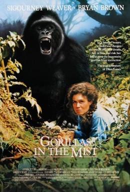 Постер фильма Гориллы в тумане (1988)