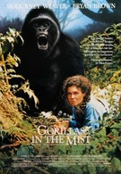 Гориллы в тумане (1988)