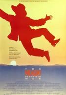 Война на бобовом поле Милагро (1988)