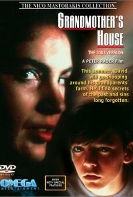 Постер фильма Бабушкин дом (1988)