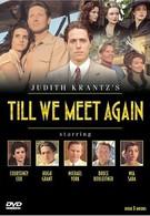 Когда мы встретимся вновь (1989)
