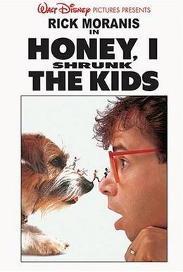 Постер фильма Дорогая, я уменьшил детей (1989)