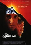 Парень-каратист 3 (1989)
