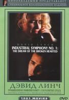 Индустриальная симфония №1: Сон девушки с разбитым сердцем (1990)
