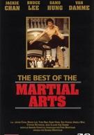 Лучшие в искусстве борьбы (1992)