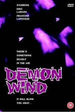 Постер фильма Ветер демонов (1990)