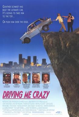 Постер фильма Сумасшедшая история (1991)