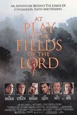 Постер фильма Игры в полях Господних (1991)