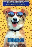 Бинго (1991)