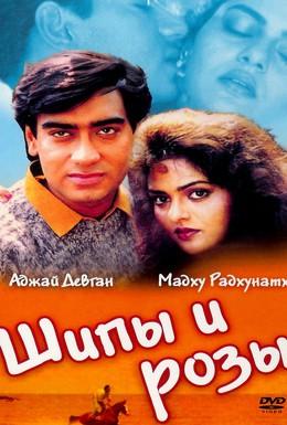 Постер фильма Шипы и розы (1991)