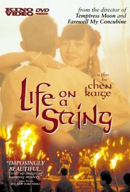 Постер фильма Жизнь на струне (1991)