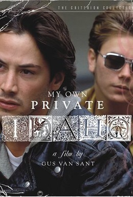 Постер фильма Мой личный штат Айдахо (1991)