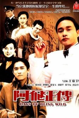 Постер фильма Дикие дни (1990)
