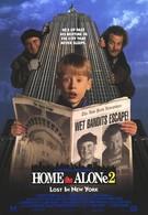 Один дома 2: Затерянный в Нью-Йорке (1992)