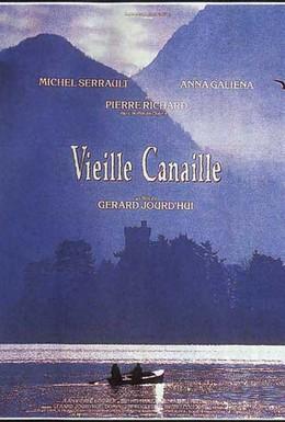 Постер фильма Старая каналья (1992)