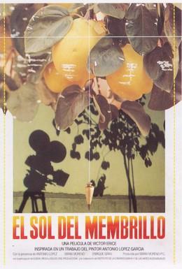Постер фильма Солнце в листве айвового дерева (1992)