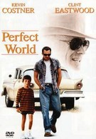 Совершенный мир (1993)