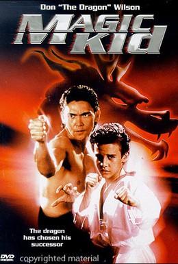 Постер фильма Ниндзя-драконы (1993)