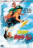 Ниндзя серферы (1993)