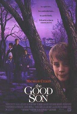 Постер фильма Добрый сынок (1993)