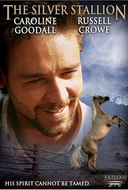 Постер фильма Серебряный ветер (1993)