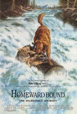 Постер фильма Дорога домой: Невероятное путешествие (1993)