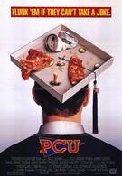 ППУ (1994)