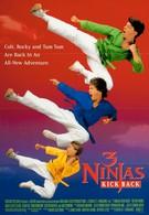 Три ниндзя наносят ответный удар (1994)