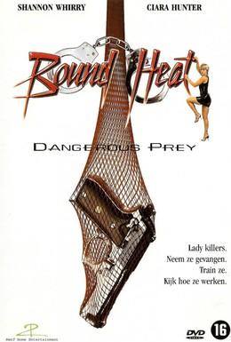 Постер фильма Опасная леди (1995)