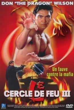 Постер фильма Огненное кольцо 3: Удар льва (1994)