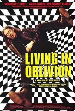 Постер фильма Жизнь в забвении (1995)