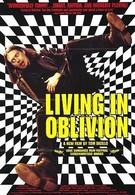 Жизнь в забвении (1995)