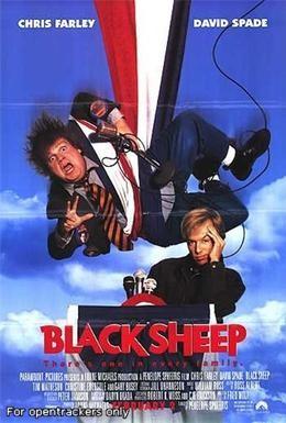 Постер фильма Паршивая овца (1996)