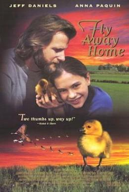 Постер фильма Летите домой (1996)