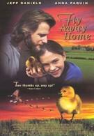 Летите домой (1996)