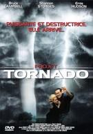 Торнадо (1996)