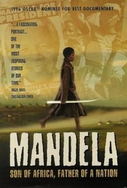 Постер фильма Мандела (1996)
