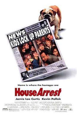 Постер фильма Домашний арест (1996)