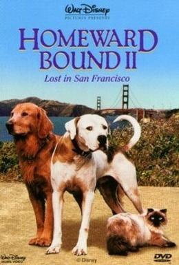 Постер фильма Дорога домой-II: Затерянные в Сан-Франциско (1996)
