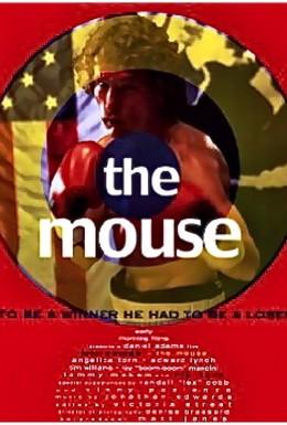 Постер фильма Подбитый глаз (1996)