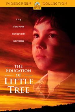 Постер фильма Приключения маленького индейца (1997)