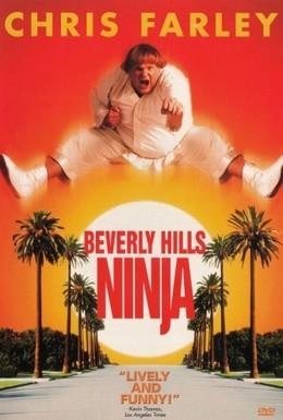Постер фильма Ниндзя из Беверли Хиллз (1997)