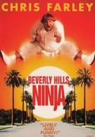 Ниндзя из Беверли Хиллз (1997)