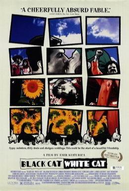 Постер фильма Черная кошка, белый кот (1998)