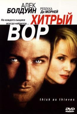 Постер фильма Хитрый вор (1999)