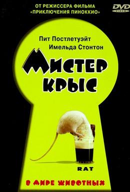 Постер фильма Мистер крыс (2000)